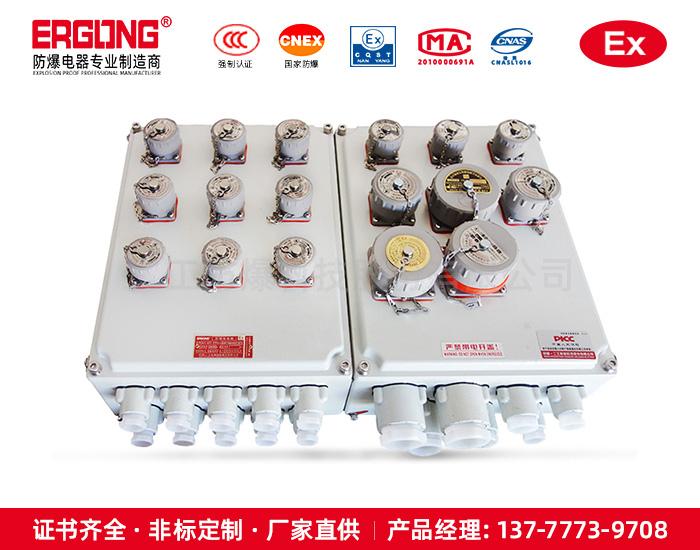氢气场所专用防爆配电箱